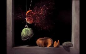 Terceras Jornadas de Arte y Estética: Arte y Sensibilidad